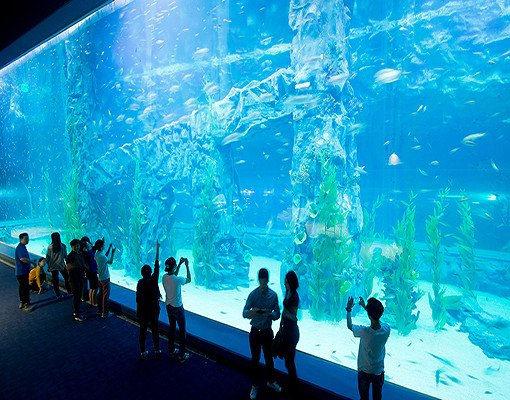 Lotte World and Lotte World Aquarium Discount Ticket_4