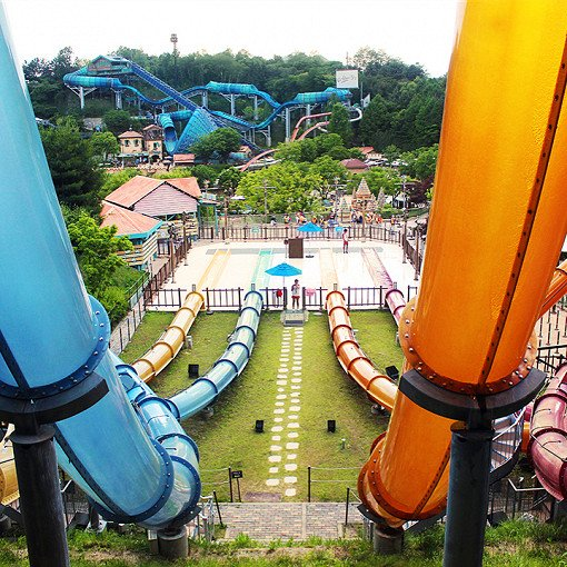 Caribbean Bay Discount Ticket and Shuttle Bus Package_7