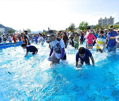 [Jul 29 - Aug 5] Bonghwa Eun-Uh(Sweet Fish) Festival Tour_0