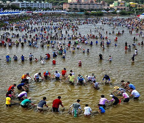 [Jul 29 - Aug 5] Bonghwa Eun-Uh(Sweet Fish) Festival Tour_2