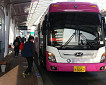 Everland & Caribbean Bay Shuttle Bus (Round Trip)_thumb_1