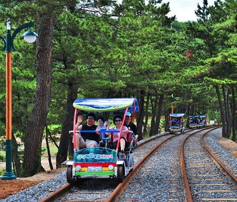 Samcheok Ocean Rail Bike Reservation_1