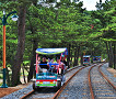 Samcheok Ocean Rail Bike Reservation_thumb_1
