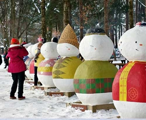 [Dec 7-Mar 24] Nami Island & Petite France & Garden of Morning Calm Shuttle One day Tour_3