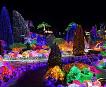[Dec 5-Mar 24] Nami Island, Garden of Morning Calm, Petite France One Day Tour_thumb_2