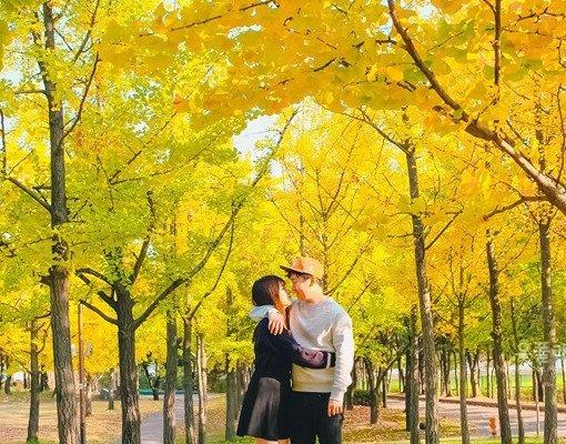 [Oct 9-Oct 22] Seoul Autumn Foliage One day shuttle bus tour