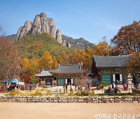 [Oct 21 - Nov 8] [From Busan] Autumn Foliage Mountain One Day Tour_1