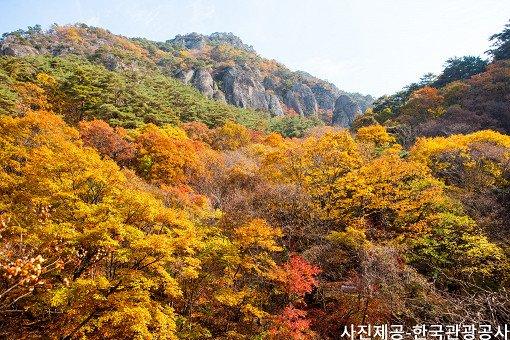 [Oct 25 - Nov 8] [From Busan] Autumn Foliage Mountain One Day Tour_12
