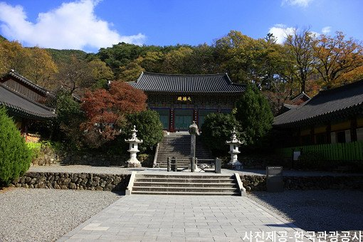 [Oct 25 - Nov 8] [From Busan] Autumn Foliage Mountain One Day Tour_10