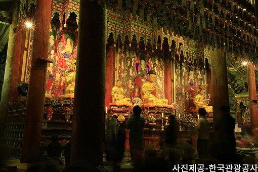 [Oct 25 - Nov 8] [From Busan] Autumn Foliage Mountain One Day Tour_9