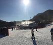 2019 Jisan Forest Ski Snowboard Lesson Shuttle Bus Package_thumb_6