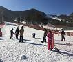 2019 Jisan Forest Ski Snowboard Lesson Shuttle Bus Package_thumb_4