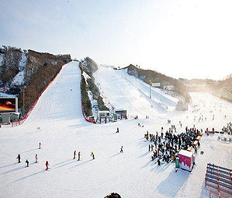 [Dec 10 - Feb 28] Nami Island & Vivaldi Ski Resort Shuttle Bus Package_1