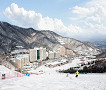 [Dec 1 - Feb 28] Nami Island & Vivaldi Ski Resort Shuttle Bus Package_thumb_5