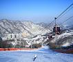 [Dec 1 - Feb 28] Nami Island & Vivaldi Ski Resort Shuttle Bus Package_thumb_7