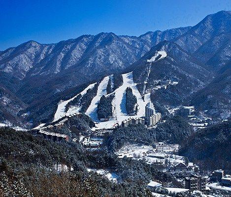 [Dec 10 - Feb 28] Bears Town Ski Snowboard Lesson Shuttle Bus Package_5