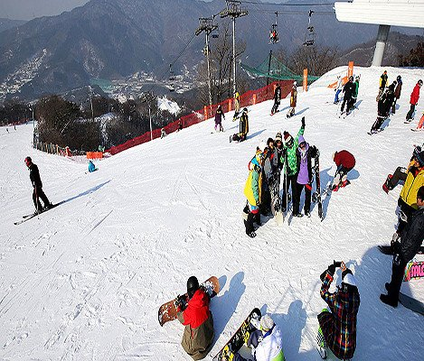 [Dec 10 - Feb 28] Bears Town Ski Snowboard Lesson Shuttle Bus Package_4