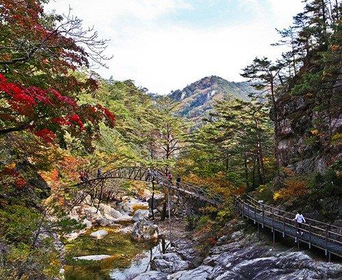 [Oct 10 - Oct 19] Odaesan Mountain Autumn Foliage Shuttle Bus One Day Tour_11