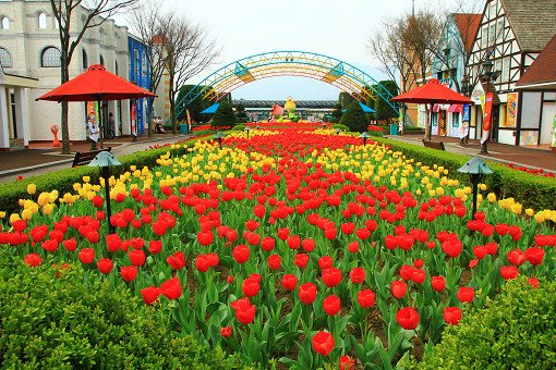Seoul Land & Zoo Discount Ticket_1