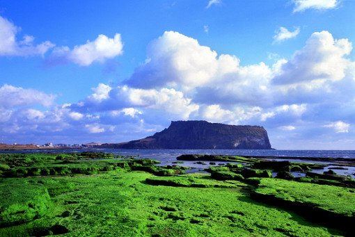 Jeju One Day Bus Tour Package (East)_18