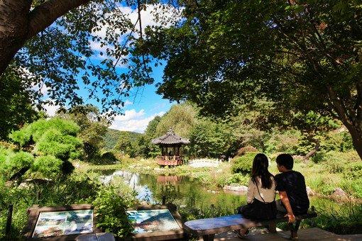 Nami Island& Garden of Morning Calm One Day Shuttle Bus Tour_0