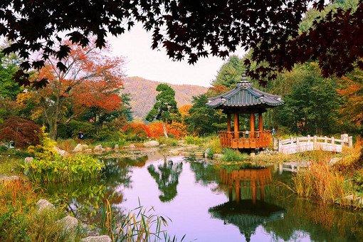 Nami Island& Garden of Morning Calm One Day Shuttle Bus Tour_6