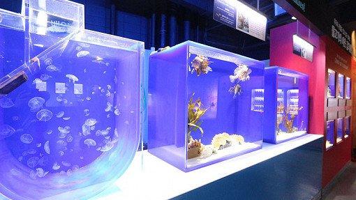 Coex Aquarium Discount Ticket_5