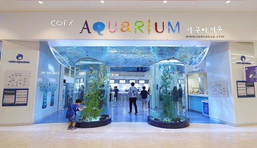 Coex Aquarium Discount Ticket_3