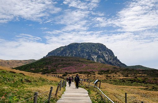 Jeju One Day Bus Tour Package (South)_15