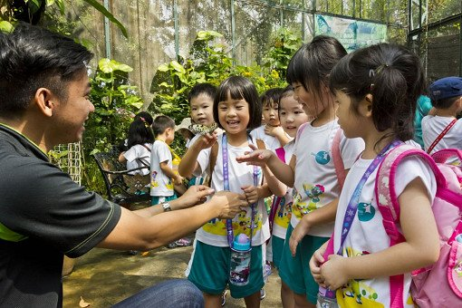 Singapore Butterfly Park and Insect Kingdom Ticket_3