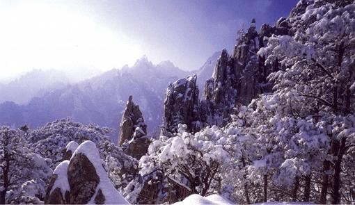 [From Alpensia/Yongpyong] Winter Seorak Mountain Half Day Tour_0