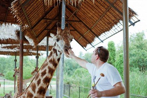 Safari World Bangkok Discount Ticket_0