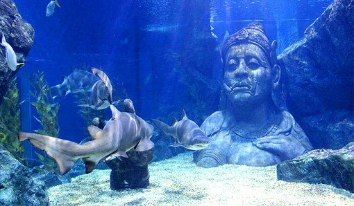 Sea Life Bangkok Ocean World Discount Ticket_0